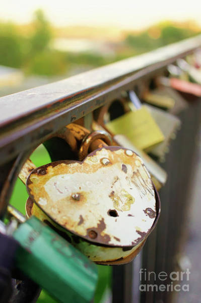 Wall Art - Photograph - Padlocks On A Bridge by Tom Gowanlock