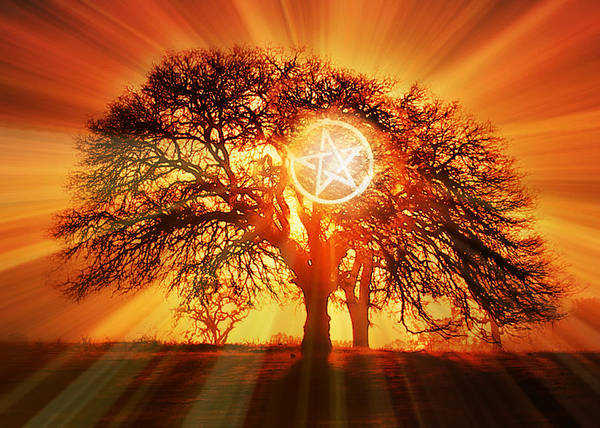 Wicca Photograph - Pagan Wicca Sacred Oak And With Pentagram  by Stephanie Laird