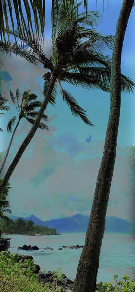 Wall Art - Photograph - Paia Bay by Stacy Vosberg