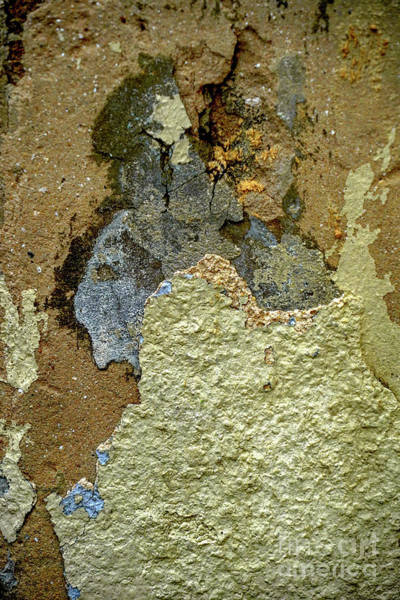 Wall Art - Photograph - Paint And Plaster Peeling Off A Wall K2 by Vladi Alon