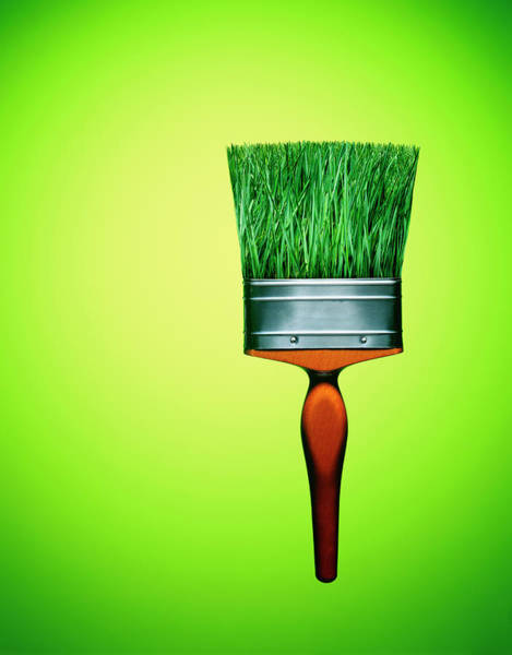 Wall Art - Photograph - Paint Brush With Grass Bristles by Adrian Burke