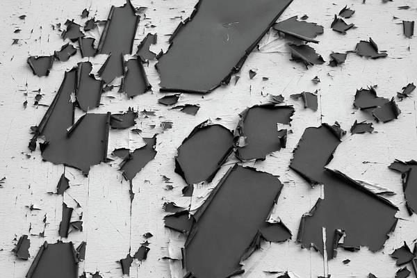 Photograph - Paint Decay by Prakash Ghai