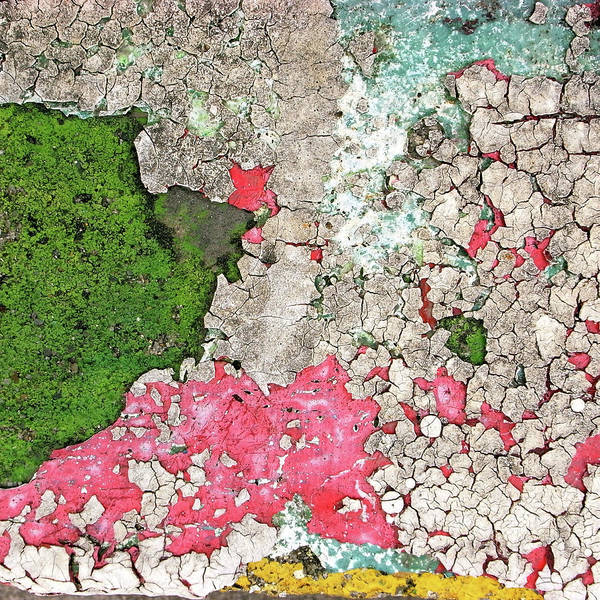 Cracked Photograph - Paint Which Was Recoated, And Cracked by Photographer, Loves Art, Lives In Kyoto