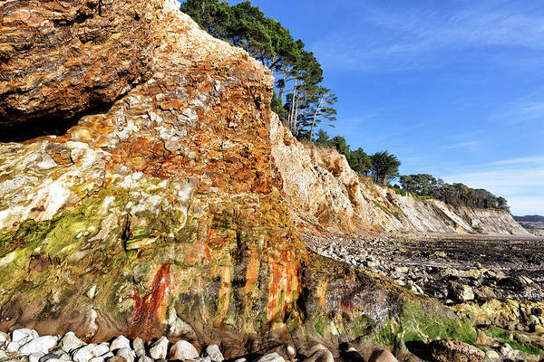 Wall Art - Photograph - Painted Bluff At Ross Creek Beach by Kathleen Bishop