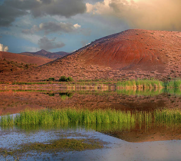 Wall Art - Photograph - Painted Cove, Painted Hills, John Day by