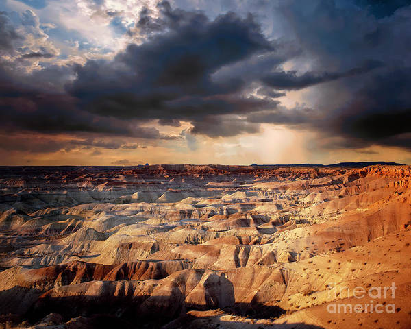 Photograph - Painted Desert by Edmund Nagele