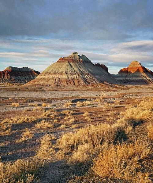 Photograph - Evening At Painted Desert by Theo O'Connor