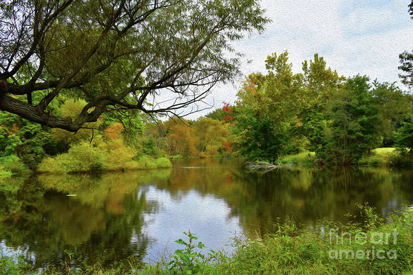 Wall Art - Photograph - Painted Fall On The Back Pond by Skip Willits