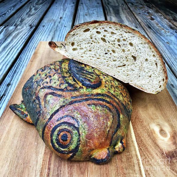 Photograph - Painted Fish Sourdough Sculpture 3 by Amy E Fraser