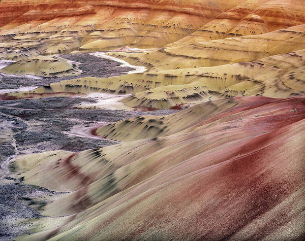 Central Oregon Photograph - Painted Hills by Leland D Howard