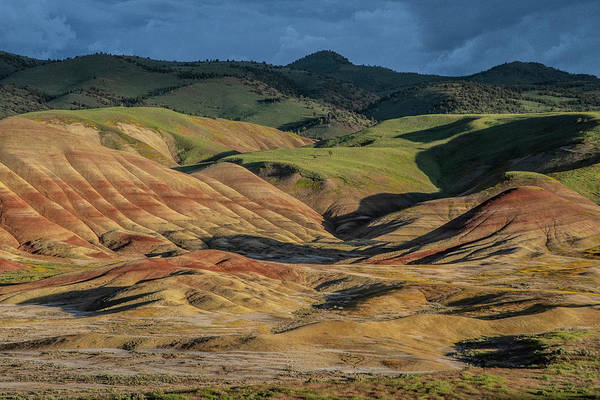 Photograph - Painted Hills Shadows by Matthew Irvin