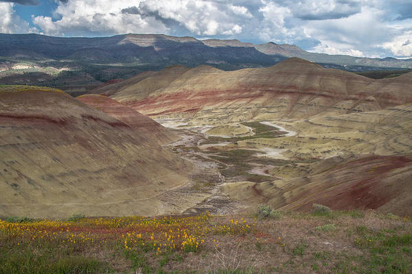 Photograph - Painted Hills Spring by Matthew Irvin