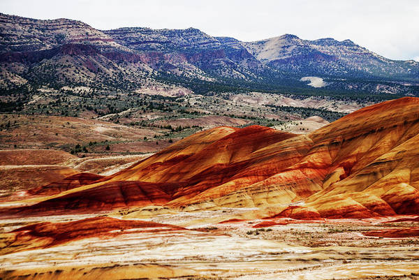 Wall Art - Photograph - Painted Hills by Vishwanath Bhat