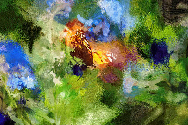 Photograph - Painted Lady Butterfly Abstract Art by Don Northup