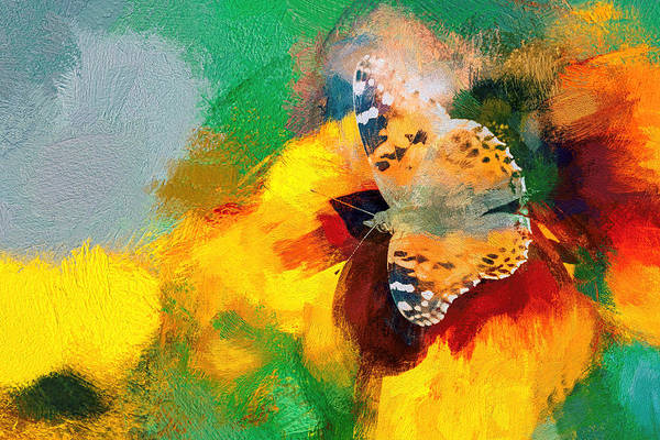 Photograph - Painted Lady Butterfly Super Strokes by Don Northup
