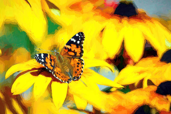 Painted Lady Butterfly Van Gogh Art Print