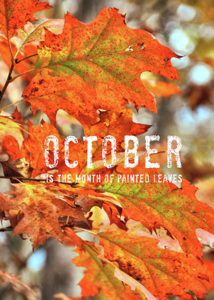 Photograph - Painted Leaves Quote by JAMART Photography