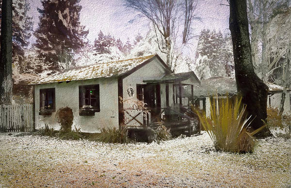 Photograph - Painted Snow Dusting by Bill Posner