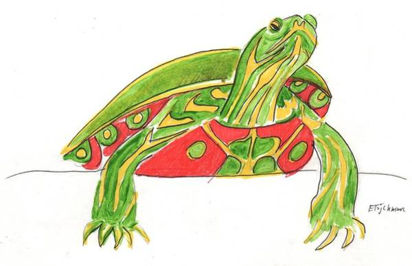 Painting - Painted Turtle by Ed Tajchman