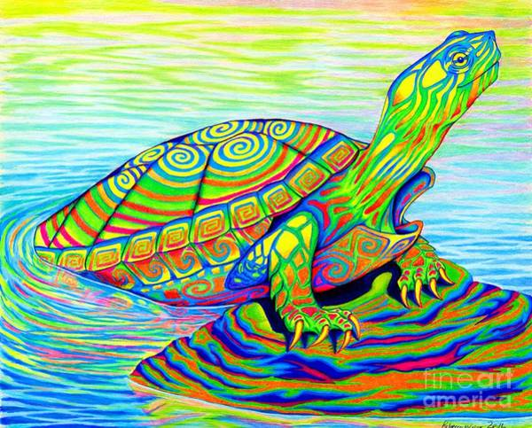 Colored Pencil Drawing Drawing - Painted Turtle by Rebecca Wang