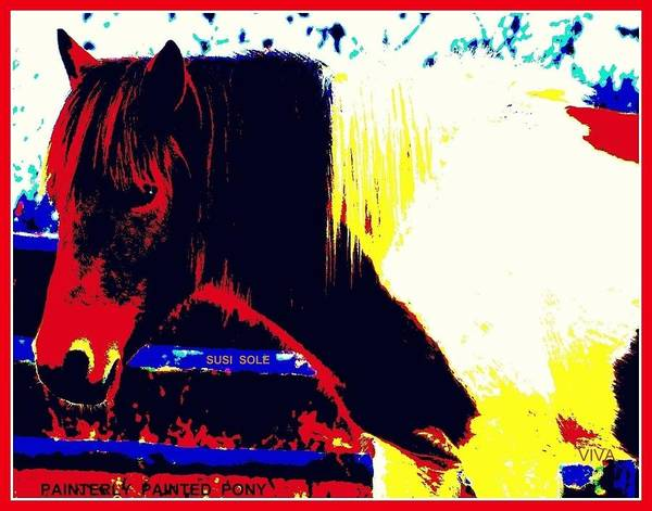 Photograph - Painterly Painted Pony by VIVA Anderson