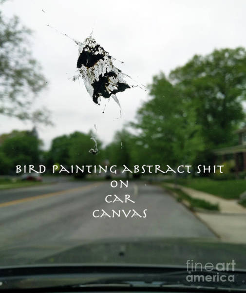 Wall Art - Photograph - Painting On Car Canvas  by Steven Digman