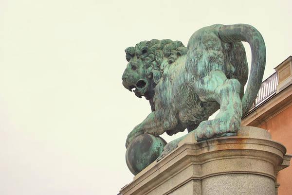 Photograph - Palace Lion by JAMART Photography