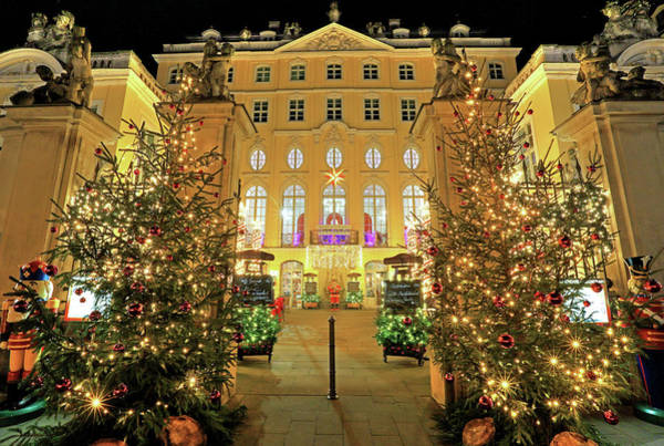Wall Art - Photograph - Palais Graefin Cosel With Christmas Decoration On Neumarkt Dresden Saxony Germany by imageBROKER - Guenter Graefenhain