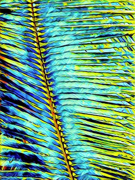 Photograph - Palm Frond In Turquoise by Joalene Young