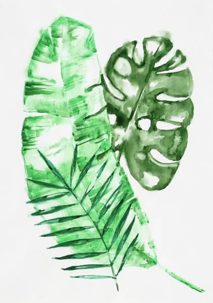 Palm Leaves-banana, Coconut, Monstera Art Print