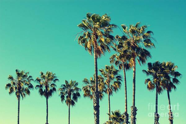 Burning Wall Art - Photograph - Palm Trees At Santa Monica Beach by Mervas