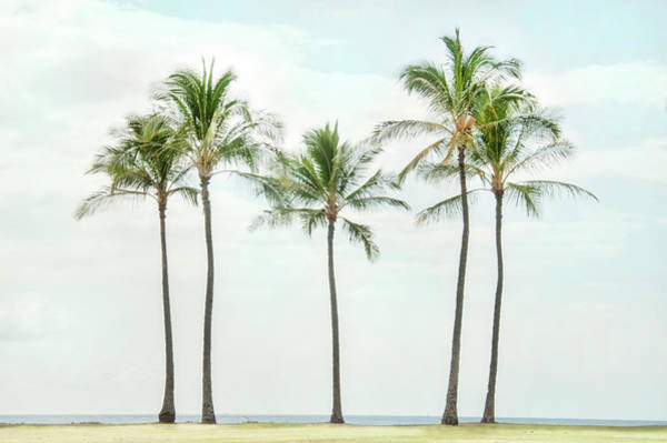 Digital Art - Palm Trees On The Beach by Ramona Murdock