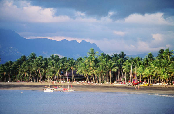 Distant Trees Wall Art - Photograph - Palms And Beach, Sheraton Royale Hotel by Peter Hendrie