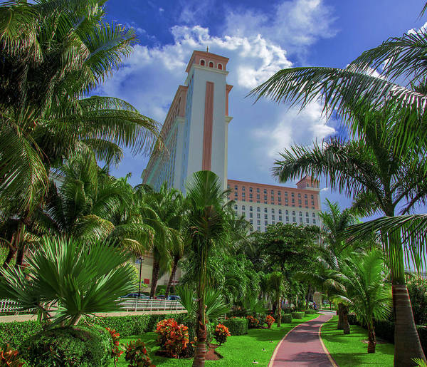 Photograph - Palms At The Riu Cancun by Sun Travels