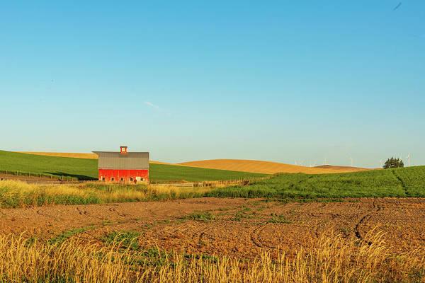 Digital Art - Palouse Hills Of Wheat Lands by Michael Lee