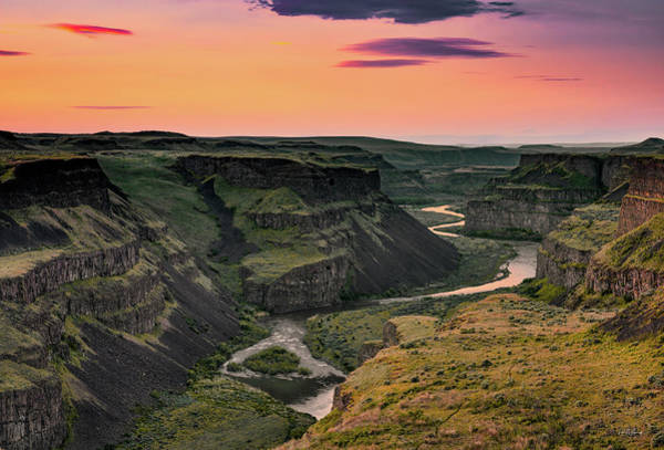 Photograph - Palouse River Canyon by Leland D Howard