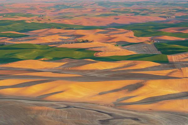 Digital Art - Palouse Rolling Wheat Fields by Michael Lee