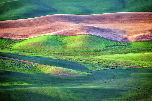 Photograph - Palouse Undulation by Rick Berk