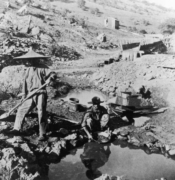 Miners Photograph - Panning For Gold by Hulton Archive