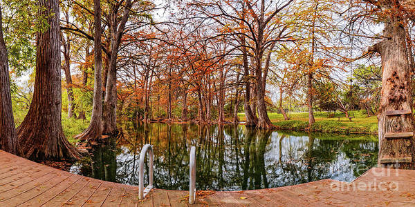 Bald Cypress Photograph - Panorama Of Fall Scene At Blue Hole Regional Park - Wimberley Hays County Texas Hill Country by Silvio Ligutti