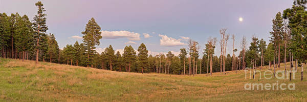 Photograph - Panorama Of Twilight Meadow At Valles Caldera - Los Alamos New Mexico Land Of Enchantment by Silvio Ligutti