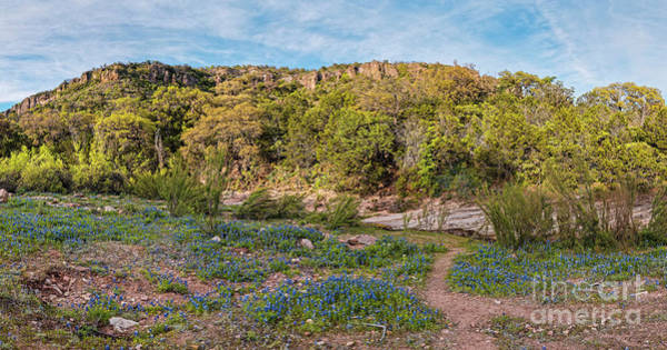 Wall Art - Photograph - Panorama Of Willow City Loop Bluebonnets And Granite Mountains - Fredericksburg Texas Hill Country by Silvio Ligutti