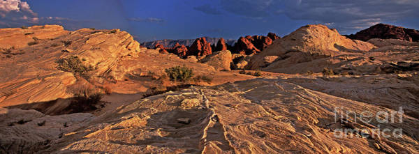 Photograph - Panorama Sunset Valley Of Fire State Park Nevada by Dave Welling