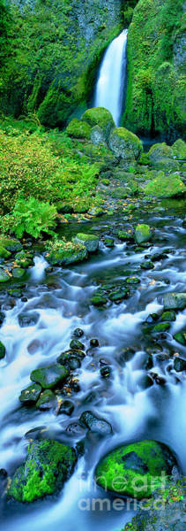 Photograph - Panorama Wachlella Falls Columbia River Gorge National Park Oregon by Dave Welling