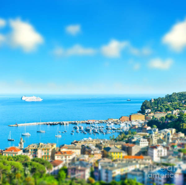 Wall Art - Photograph - Panoramic View  With Tilt-shift Effect by Liligraphie