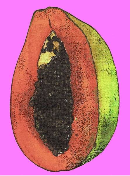 Engels Painting - Papaya by Sarah Thompson-engels