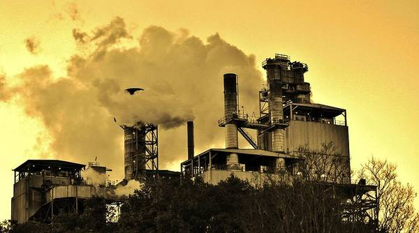 Photograph - Paper Mill by Cynthia Guinn