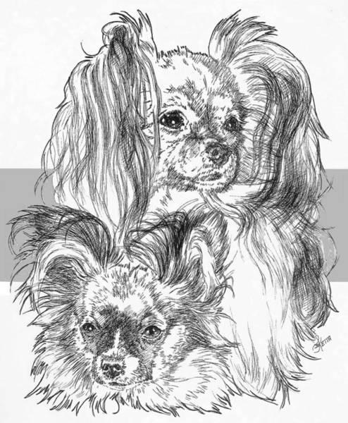 Drawing - Papillon And Pup by Barbara Keith