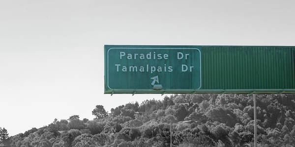 Wall Art - Photograph - Paradise Tamalpais Drive California Road Sign by Betsy Knapp