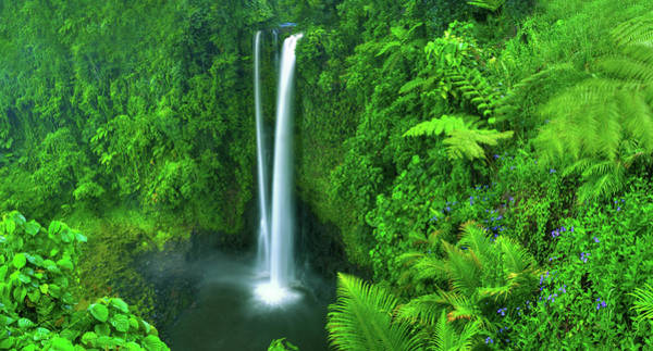 Wall Art - Photograph - Paradise Waterfall by Rawpixel